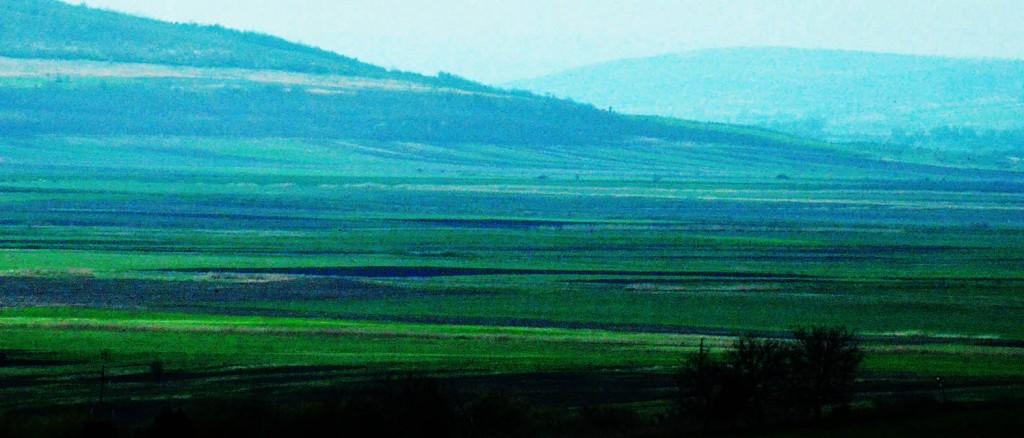 2014 04 23 Slutt Landskap i grønt